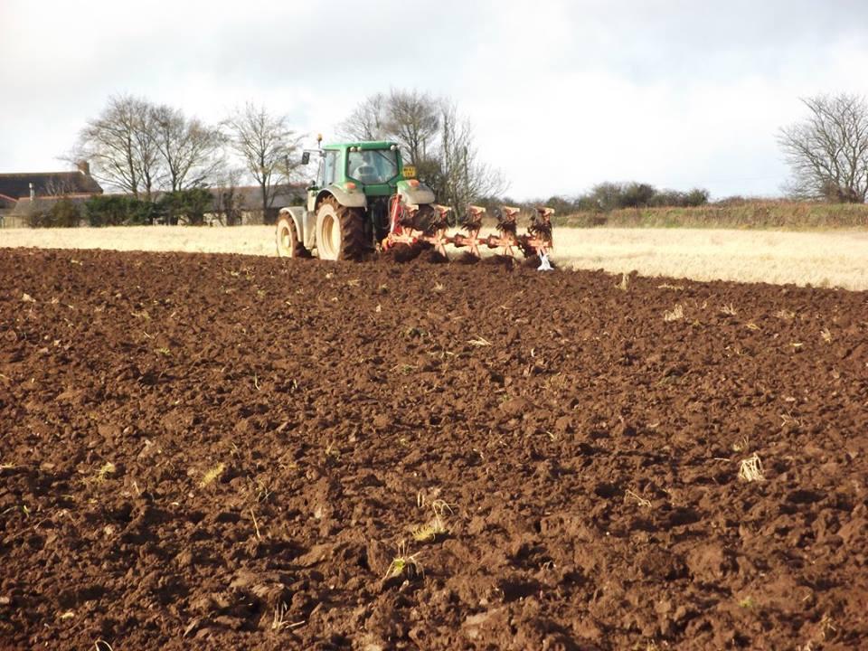 spud-sowing