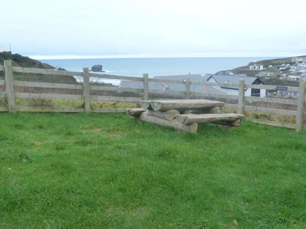 Tehidy pic 25 viewing portreath