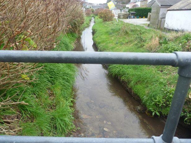 Tehidy pic 32 the stream